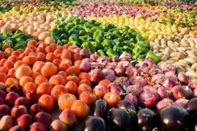 أأهم الصادرات الزراعية المصرية
