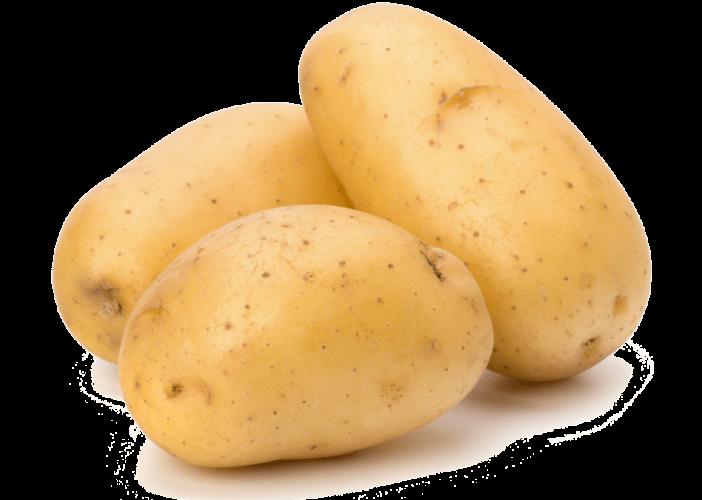 توريد-وتصدير-بطاطس-من-شركة-دالتكس-إمباسكو-للتنمية-الزراعية-والتصدير