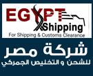 شركة مصر للشحن والتخليص الجمركي