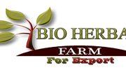 شركه بيو هيربل فارم لتصدير الأعشاب والتوابل والبقوليات
