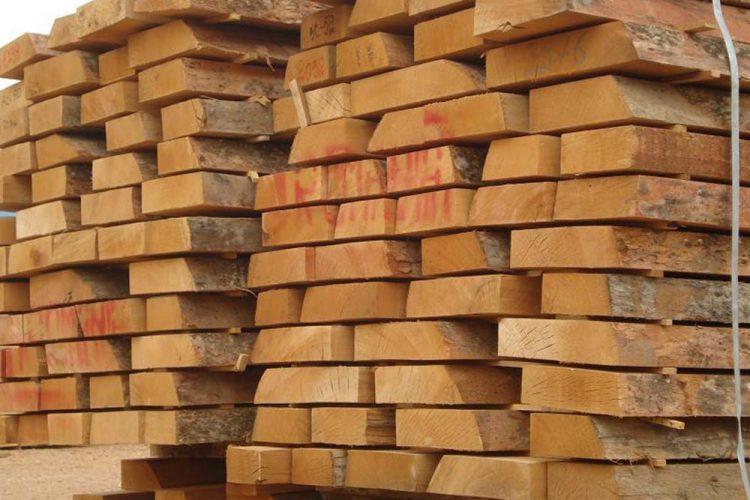 توريد-جميع-انواع-خشب-الزان1