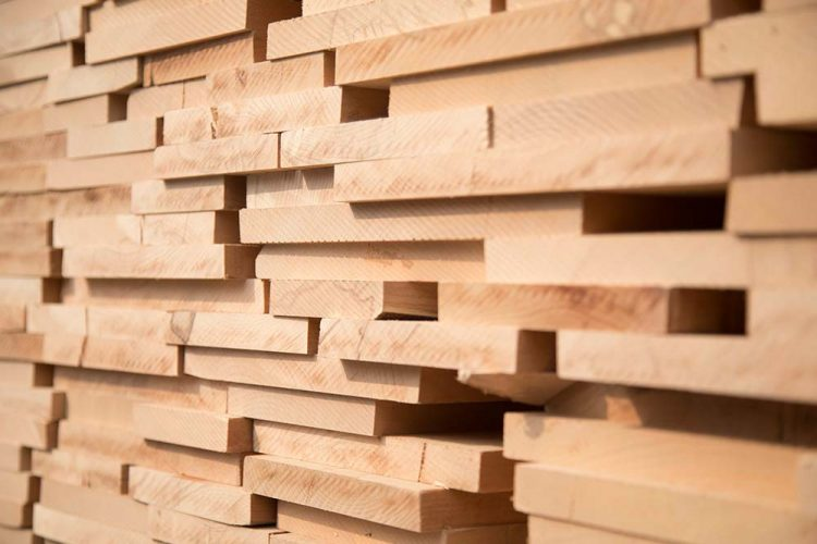 توريد-خشب-الزان-الالماني-من-شركه-بولماير