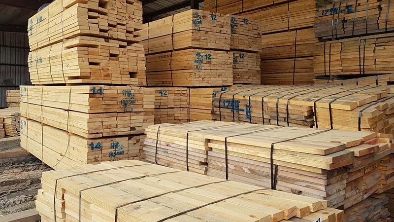 توريد-خشب-اليلوباين-الامريكي-خشب-البيتش-باين-–-خشب-العزيزي-