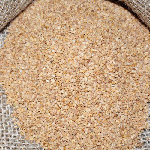 تصدير-وتوريد-السمسم-من-شركة-الاصيل