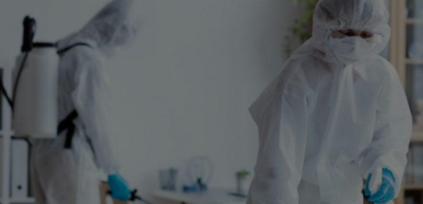 خدمات-مكافحة-الحشرات-من-شركة-بروفيشنال-سيرفس