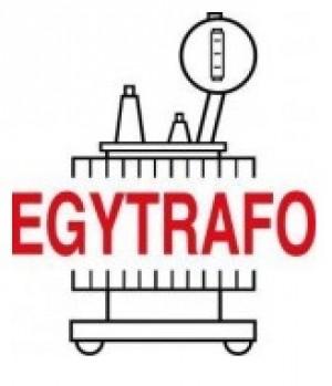 شركة ايجيترافو للصناعات الكهربائية (ش.م.م)
