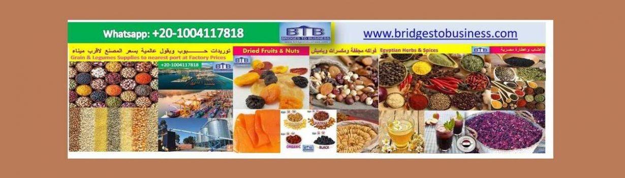 شركة بريدج تو بيزنس لتصدير المنتجات الغذائية