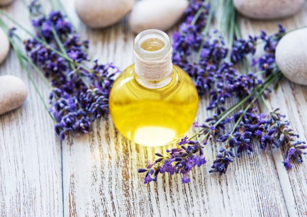 lavender-oil-lavender-flowers_the-panther