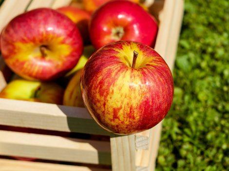 انتاج-بيوريه-التفاح-من-ثمار-التفاح-الطازجة-من-شركة-المروة