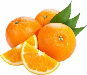 تصدير-برتقال-فالنسيا-من-شركة-ايفر-جرين